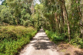 Old Bellamy Road